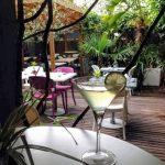 Cocktail au Jardin au Havre